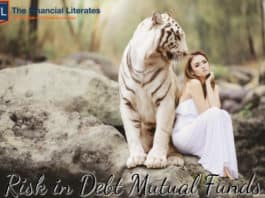 debt mutual fund risk